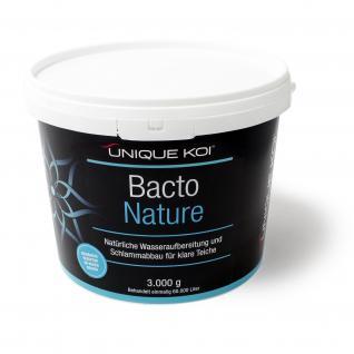Unique Koi Bacto Nature 3000 g für 60000 l Teichwasser