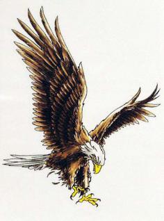 Abziehbild,Motiv Tattoo 54 - Vorschau
