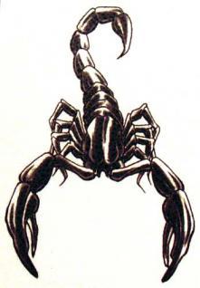 Abziehbild, Motiv Tattoo 60