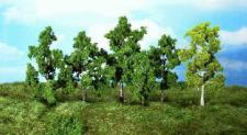 Heki 1951 Laub-Bäume