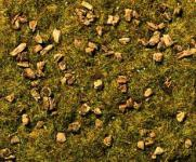 Noch 08360 Steinige Bergwiesen-Gras