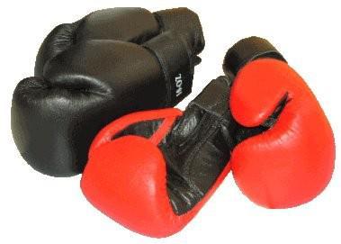 """Boxhandschuhe """"Competition"""" rot/schwarz - Echtleder"""