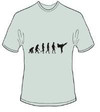 T-Shirt Evolution Karate Farbe ash