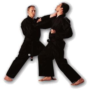 Adidas Karateanzug Bushido