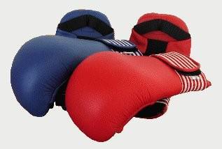 Karate Faustschützer blau