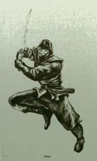 Stoffbild Ninja