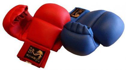 Karate Faustschützer 4Finger rot - Vorschau 1