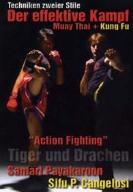 Der effektive Kampf - Muay Thai + Kung Fu - Vorschau