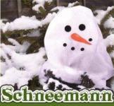 Pflanzenschutzhaube Schneemann 130x160cm
