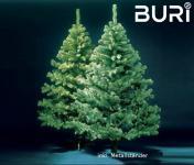 Weihnachtsbaum BURI® mit 2096 Spitzen 240cm