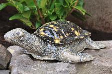 Keramikfigur Schildkröte groß, Figur aus Keramik