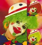 Perücke Clown 3 Farben Clownperücke