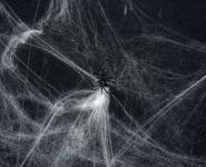 Deko Spinne Spinnennetzdeko Spinnedeko Spinnennetz mit Spinnen Netze Spinnen Netz Spinnengewebe