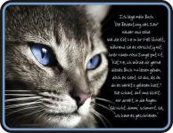 Fun Schild Alu Blechschild bedruckt + geprägt - Das Buch der Katze - Geschenk