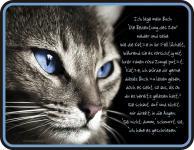 Fun Schilder - Das Buch der Katzen