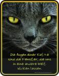 Blechschilder - Die Augen einer Katze