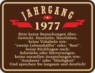 Geburtstag 40 Jahre Blechschild Jahrgang 1977 Fun Schild Alu geprägt bedruckt