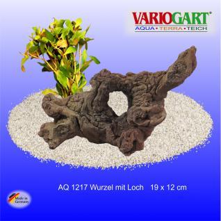 Wurzel mit Loch - Dekoration für Aquarium & Terrarium
