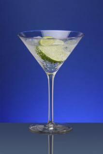 Martini Glas ca. 0, 1l SAN (kein Eichstrich) - Kunststoff