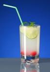 Cocktailglas SAN, ca. 0, 3l /ohne Eichstrich - Kunststoff