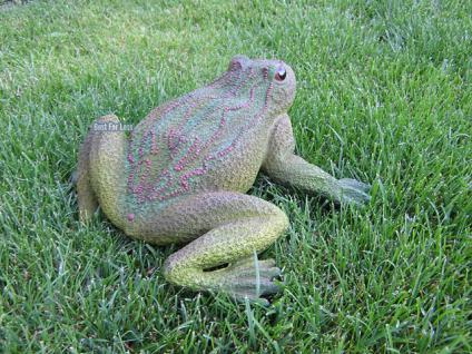 Frosch Kröte Dekofigur für Garten und Gartenteich - Vorschau 3
