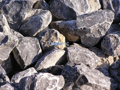 natursteine gabione grau wei findlinge steine steingarten. Black Bedroom Furniture Sets. Home Design Ideas