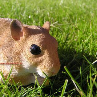 Haustier Hamster Figur Statue Nager - Vorschau 2