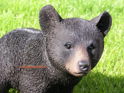 Amerikanischer Schwarzbär Bär Figur Statue Skulptur Fan Artikel - Vorschau 3