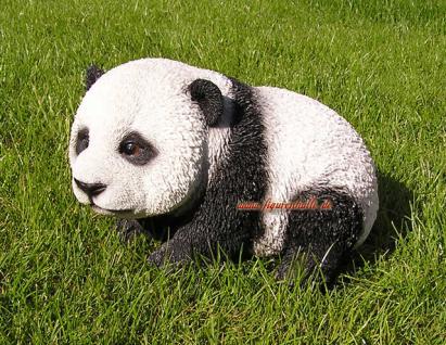 Pandabär Panda Bär Figur Statue Skulptur Fan Deko lebensecht