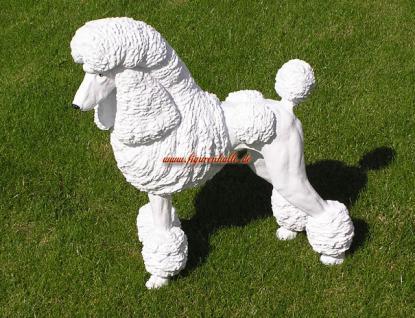 Großpudel Pudel Figur Statue Skulptur Fan Artikel - Vorschau 1
