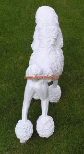 Großpudel Pudel Figur Statue Skulptur Fan Artikel - Vorschau 5