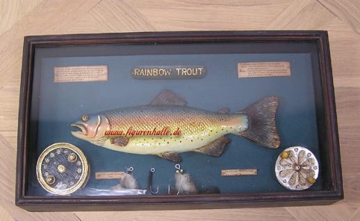 Dekoration Antik Fliegenrolle Regenbogenforelle Deko Kasten