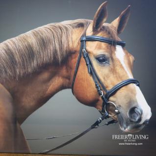 Pferdekopf Wandbild in braunem Holz Bilderrahmen - Vorschau 2