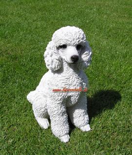 Pudel weiß Riesenpudel Poodle Figur Dekofigur Königspudel Statue