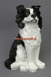 Border Colli Figur für Hunde Freunde und Fans als Deko
