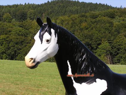 Pferd Westernpferd Quarter horses Figur Lebensgroß Statue geflecktes - Vorschau 2