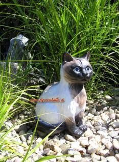 Siam Katze Figur Dekofigur Gartenfigur Tierfigur - Vorschau 3