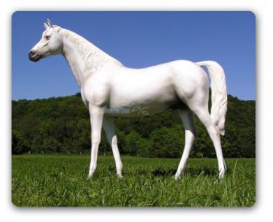 Pferd weiß Schimmel Lebensgroßes Dekofigur - Vorschau 1