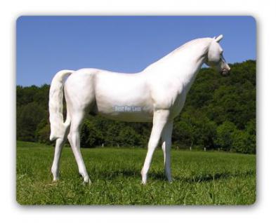 Pferd weiß Schimmel Lebensgroßes Dekofigur - Vorschau 3