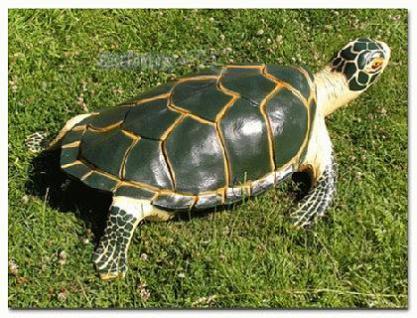 Wasserschildkröte Figur Schildkröte Dekofigur - Vorschau 1
