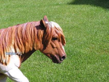 Pferd Dekofigur Pony Figur Reiterhof - Vorschau 2