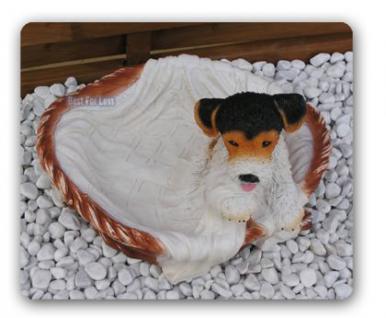 Foxterrier Figur Dekofigur in Hundekorb Statue - Vorschau 2