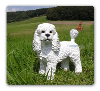 Pudel Poodle Figur Dekofigur Königspudel Statue