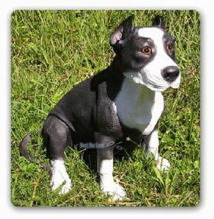 Staffordshire Bull Terrier Figur Tierfigur Hunde