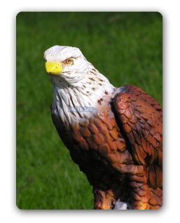 Adler Falke Dekofigur Raubfogel Figur Dekoration