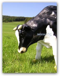 Kuh Dekofigur oder Bauernhof Dekoration Figur - Vorschau 5