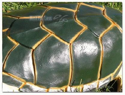 Wasserschildkröte Figur Schildkröte Dekofigur - Vorschau 4