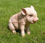 Zwergschwein Schwein Deko-Figur oder Werbefigur
