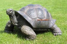 Schildkröte als Dekofigur Figur Dekoration Garten