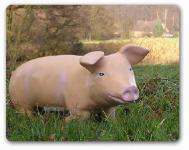 Schwein Deko-Figur oder Werbefigur